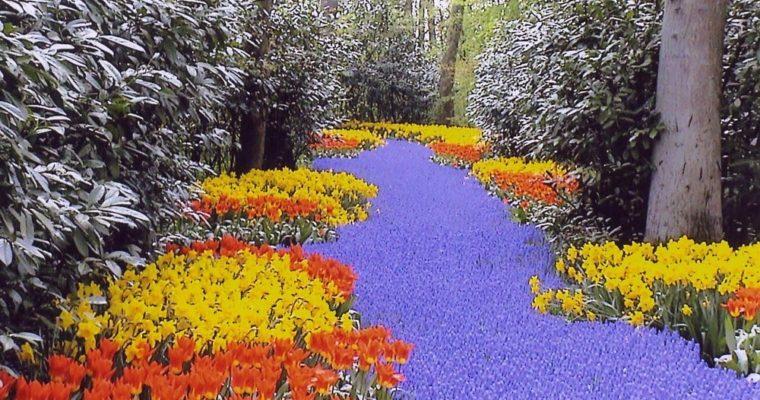 Wiosna, wiosna, wiosna ach to Ty….